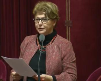 Nadia SOLLOGOUB au Sénat lors de son intervention le jeudi 15 janvier 2019 à l'occasion du débat sur les mobilités du futur en présence d'Élisabeth BORNE