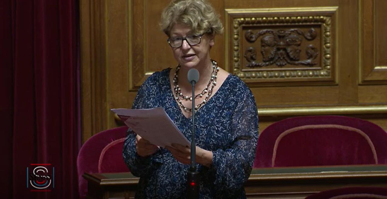 Nadia SOLLOGOUB interroge Adrien TAQUET au Sénat le 3 juillet 2019