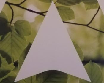 """visuel graphique de Cap Emloi """"triangle de feuillage"""""""