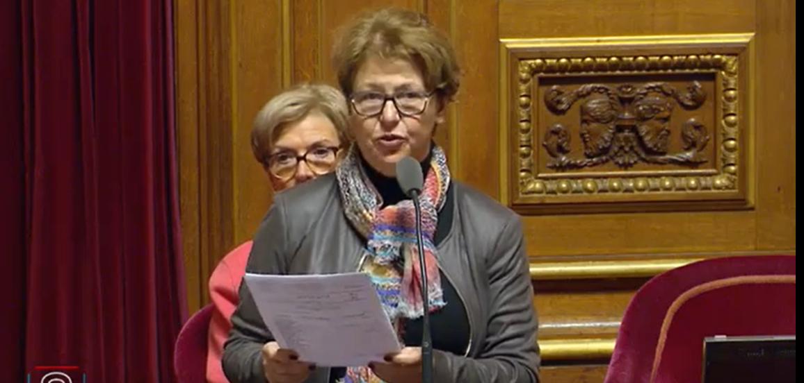 Nadia SOLLOGOUB lors de son intervention au Sénat à l'occasion du projet de loi de finances 2020 le 28 novembre 2019 pour le financement des aides dédiées aux installations d'assainissement individuel